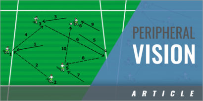 Peripheral Vision Coaching Session