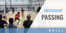Crosscourt Passing Drill with Felipe Coronel – Houston Juniors and Lauren Carlini – USA National Team