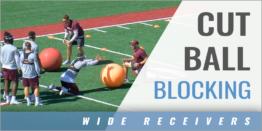 Wide Receivers: Cut Ball Blocking Drill